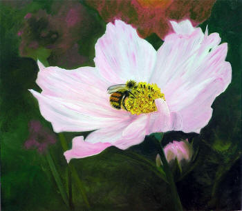 Pink Cosmos - oil on panel by Margo Kelley