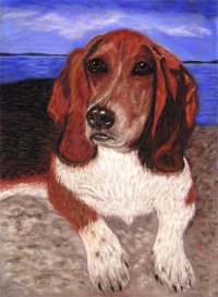 'Schubert' - Pastel painting by Margo Kelley