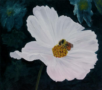 White Cosmos - oil on panel by Margo Kelley